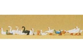 Ducks Geese & Swans HO/OO Scale