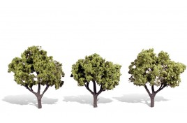 Classic Trees Early Light Medium (3