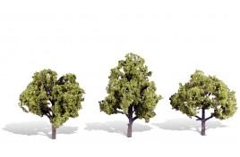 Classic Trees Early Light Medium (4