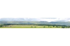 208D Hills And Dales Backscene Pack D 10 Feet x 9 Inches OO Gauge