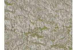 Wrinkle Rocks Seiser Alm 45x25.5cm