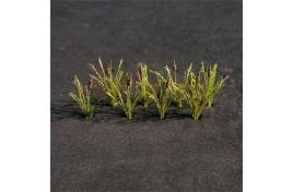 Bulrushes (20) - 00909