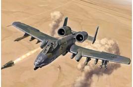 A-10 A/C Thunderbolt II Gulf War 25th Anniversary 1/72