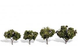 Classic Trees Sun Kissed Medium (2