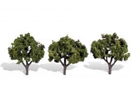 Classic Trees Sun Kissed Medium (3