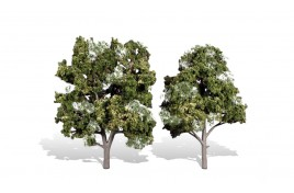 Classic Trees Sun Kissed Medium/Large (5