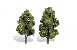 Classic Trees Sun Kissed Medium/Large (6
