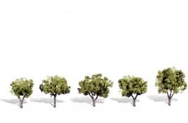 Classic Trees Small/Medium (1.25