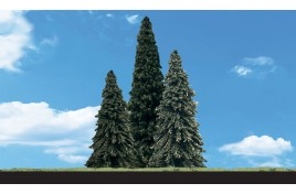 Classic Trees Forever Green (Fir) Medium (2