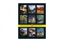 Woodland Scenics Catalogue