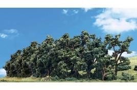 Classic Trees Hedgerow Small/Medium (1