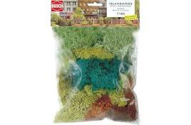 Assorted Lichen Four Colours 70g