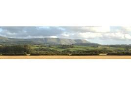 242 Harvest Hills Backscene 10 feet x 15 inches OO Scale
