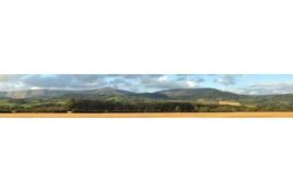 242N Harvest Hills Backscene 10 feet x 9 inches N Scale